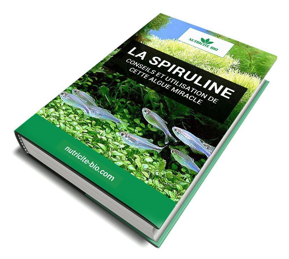 book handbuch der kommunalen wissenschaft und praxis band 5 kommunale wirtschaft